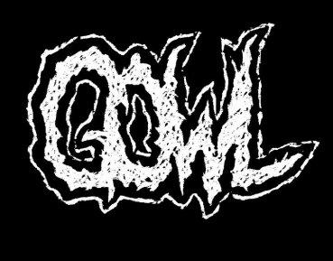 d1d05-gowl
